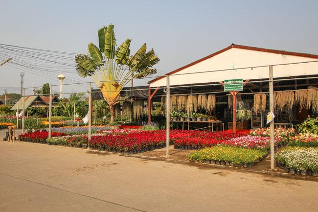 Khamtieng Market in Chiang Mai