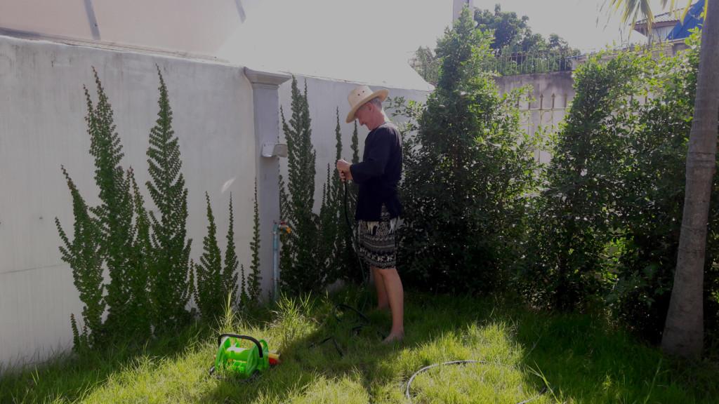 My Front Garden June 2015