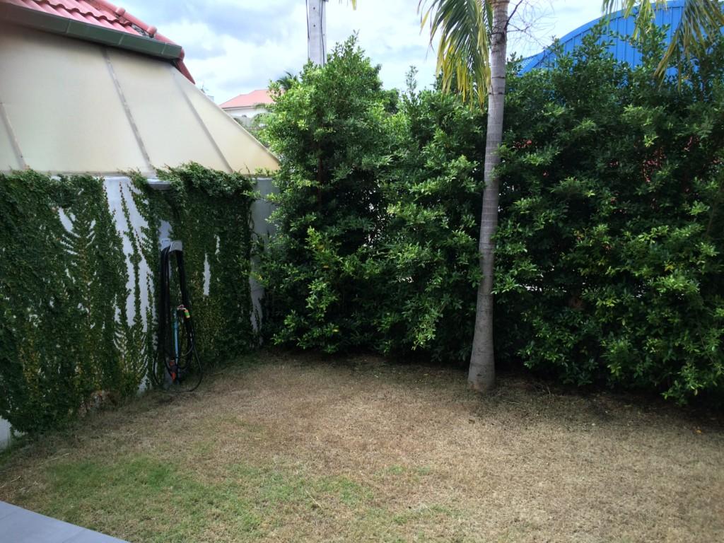 My Front Garden June 2016
