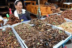 Thailand Edible Insects Street Food